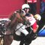 CEIA consagra a Quinta de Santo António como Campeã Nacional de Horseball