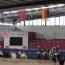 Campeonato Nacional de Horseball Sénior e Open Sub 16 arranca no CEIA