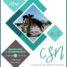 CSN A/C 25-26-27 DE MAIO